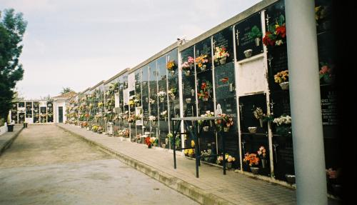 gran canaria2008 130